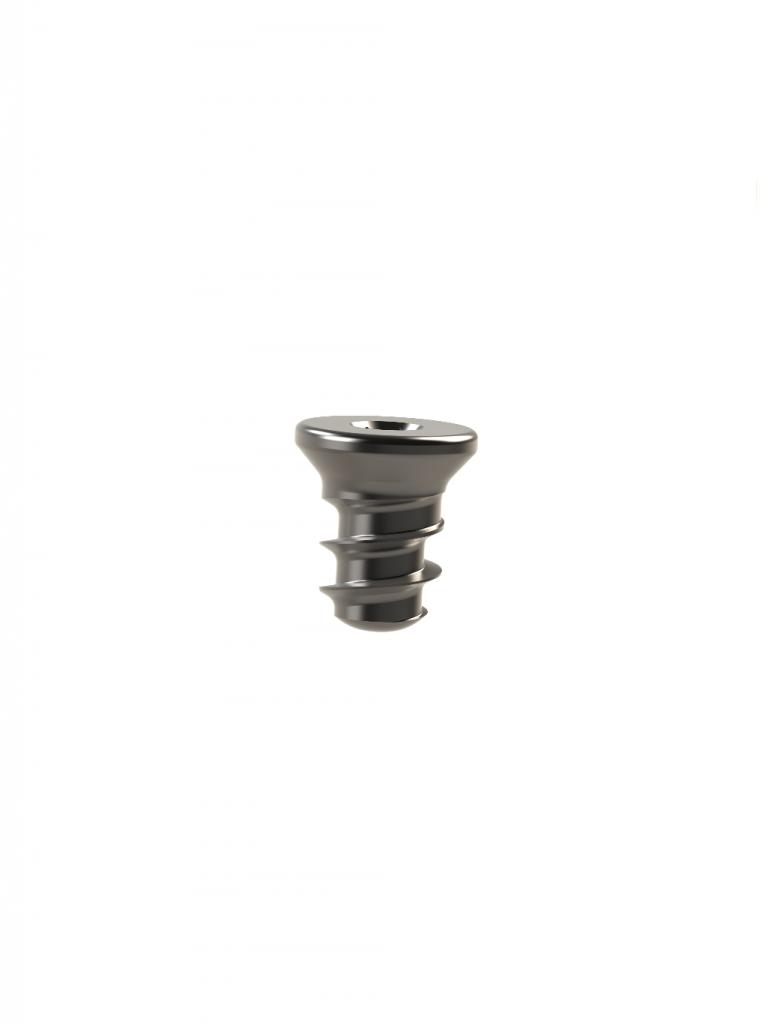 photograph of a titanium bone screw